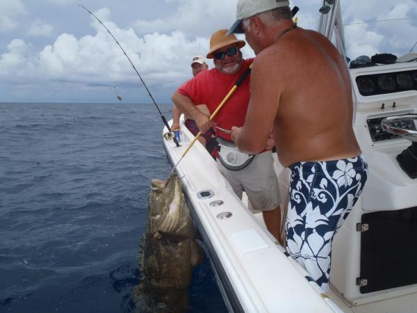 Vinny with his #150+ Goliath Grouper